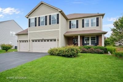 Elburn Single Family Home For Sale: 1149 Motz Street