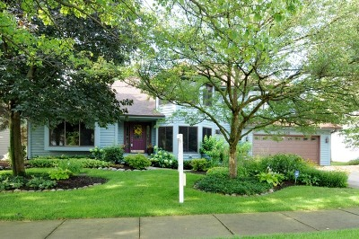 Naperville Single Family Home For Sale: 948 West Bailey Road