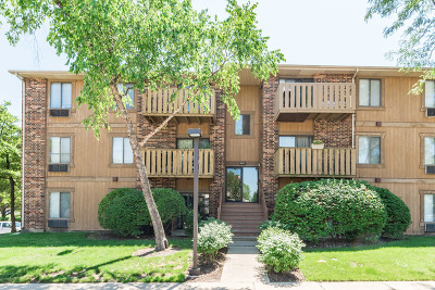 Roselle Condo/Townhouse For Sale: 746 Prescott Drive #205