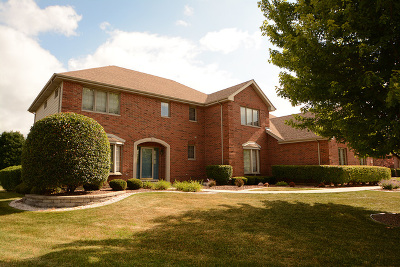 Orland Park Single Family Home For Sale: 10828 Doyle Court
