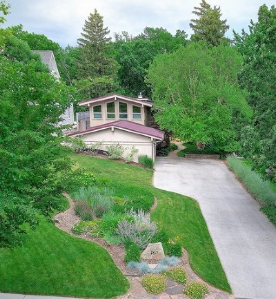 Downers Grove Single Family Home For Sale: 4817 Lee Avenue