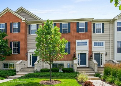 Gilberts Condo/Townhouse For Sale: 247 Jackson Street