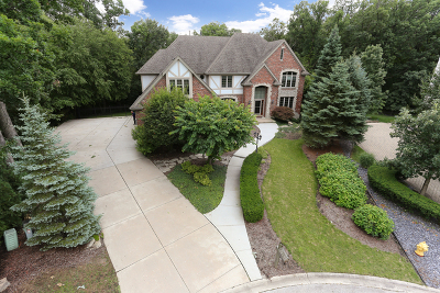 Homer Glen Single Family Home For Sale: 16143 Creekwood Court
