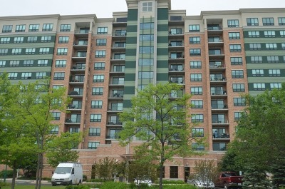 Woodridge Condo/Townhouse For Sale: 6420 Double Eagle Drive #1208