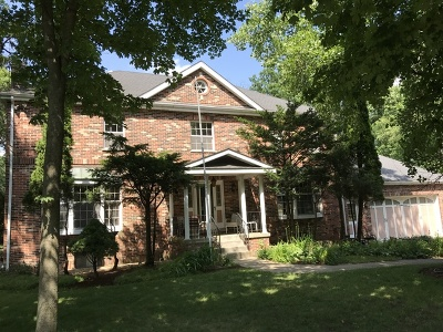 St. Charles Single Family Home New: 43w001 Empire Road