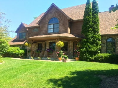 Mokena Single Family Home For Sale: 20335 Swinford Lane
