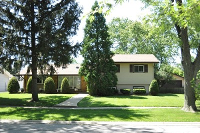 Hoffman Estates Single Family Home New: 595 Amherst Lane