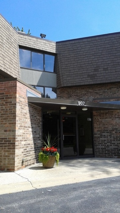 Westmont Condo/Townhouse For Sale: 907 South Williams Street #1-104