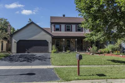 Bartlett Single Family Home New: 710 Heather Lane