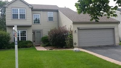 Lake In The Hills Single Family Home New: 641 Joseph Street
