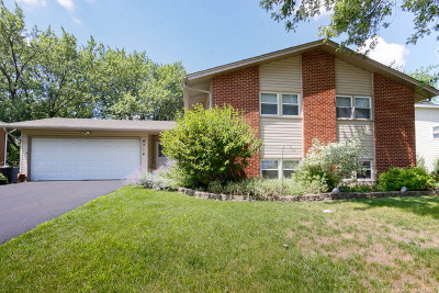 Woodridge Single Family Home For Sale: 6714 Patton Drive