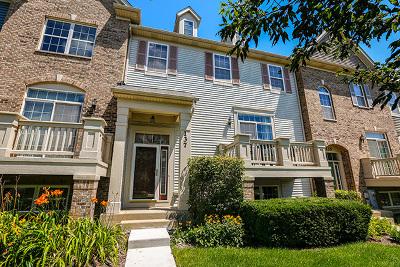 Carol Stream Condo/Townhouse New: 137 Goldenhill Street