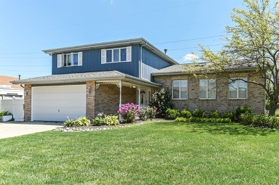 Tinley Park Single Family Home Contingent: 17619 Cloverview Drive