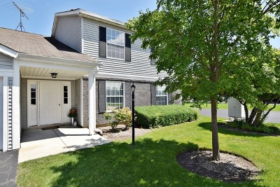Bartlett Condo/Townhouse New: 362 Wilmington Drive #B2