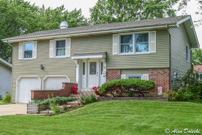 Hoffman Estates Single Family Home New: 1382 West Oakmont Road