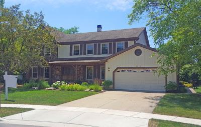 Hoffman Estates Single Family Home New: 3854 Moulin Lane