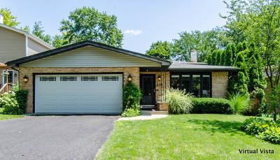 Glen Ellyn Single Family Home Contingent: 133 North Ott Avenue