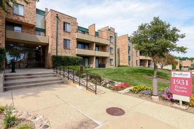 Schaumburg Condo/Townhouse New: 1931 Prairie Square #310