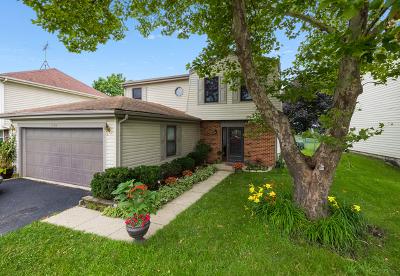 Roselle Single Family Home New: 1130 Singleton Drive