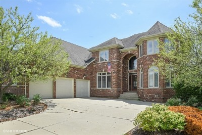 South Elgin Single Family Home Contingent: 35 East Sandstone Court