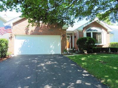 Bartlett IL Single Family Home New: $299,900