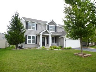 Plainfield Single Family Home For Sale: 14627 Meadow Lane