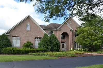 St. Charles Single Family Home For Sale: 37w963 Heritage Oaks Drive