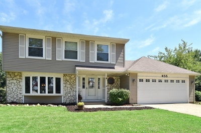 Roselle Single Family Home New: 855 Summerfield Drive