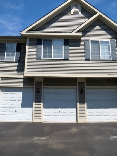 South Elgin Condo/Townhouse For Sale: 272 Windsor Court #B