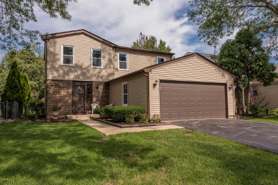 Carol Stream Single Family Home New: 729 Iroquois Trail