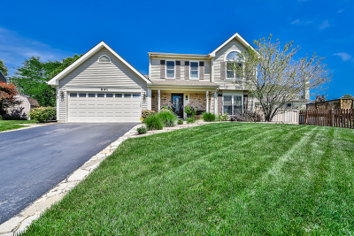 Carol Stream Single Family Home New: 891 Winchester Court