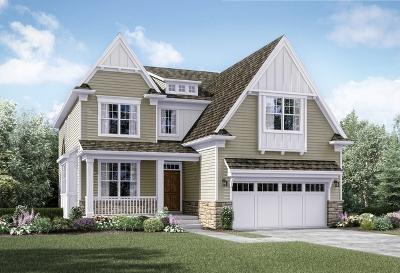 Elmhurst Single Family Home For Sale: 141 North Caroline Avenue