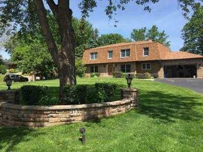 Bloomingdale Single Family Home For Sale: 313 Meadowlark Road