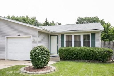 Elgin Condo/Townhouse New: 1259 Robinwood Drive #1259