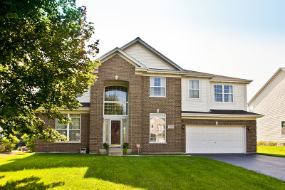 Hoffman Estates Single Family Home New: 1345 Mallard Lane