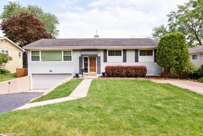 Barrington Single Family Home For Sale: 811 Skyline Drive