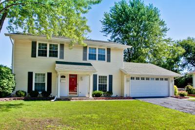 Roselle Single Family Home New: 728 Sunrise Lane