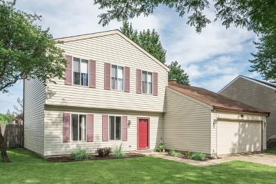 Bartlett IL Single Family Home New: $249,900