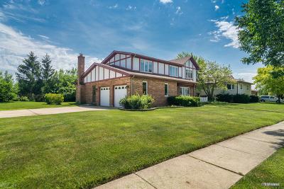 Schaumburg Single Family Home New: 917 Apple Drive