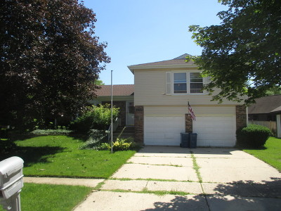 Bartlett IL Single Family Home New: $247,000
