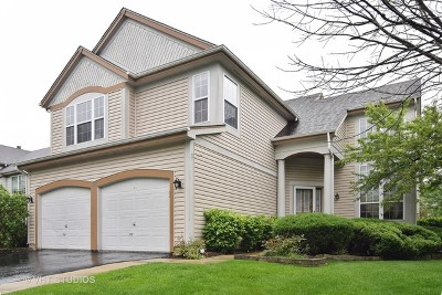 Bartlett IL Single Family Home New: $349,900