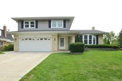 Schaumburg Single Family Home New: 513 Summit Drive