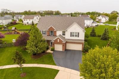 Carpentersville Single Family Home Contingent: 3529 Ridge Circle