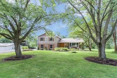 St. Charles Single Family Home New: 38w267 Toms Trail Drive