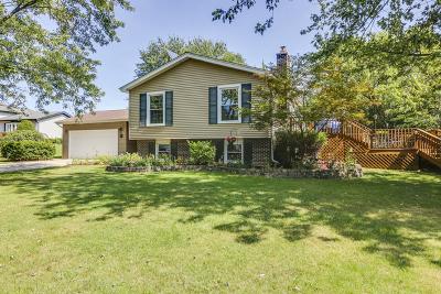 Darien Single Family Home For Sale: 6921 Wilmette Avenue