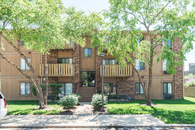 Roselle Condo/Townhouse For Sale: 756 Prescott Drive #110
