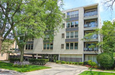River Forest Condo/Townhouse For Sale: 1535 Park Avenue #305