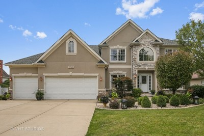 Plainfield Single Family Home For Sale: 15740 Windmill Lane
