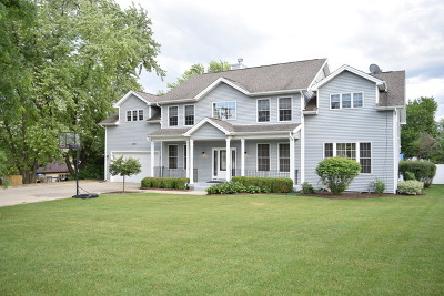 Schaumburg Single Family Home New: 1523 West Wise Road