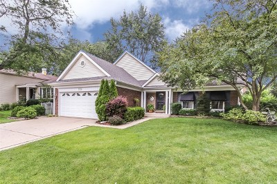 Schaumburg Single Family Home New: 725 Primrose Lane